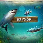 Na Ryby, Let's Fish !
